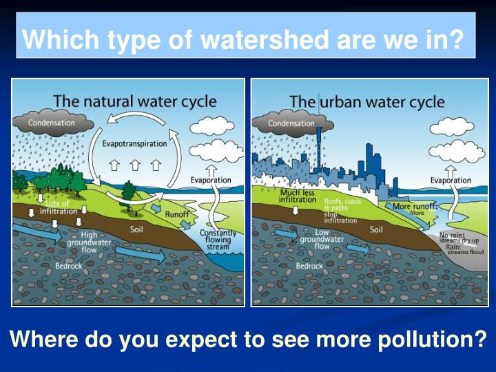 Which type of watershed are we in?