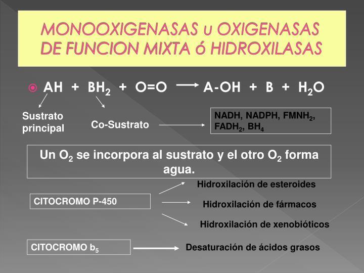 Hidroxilación de esteroides