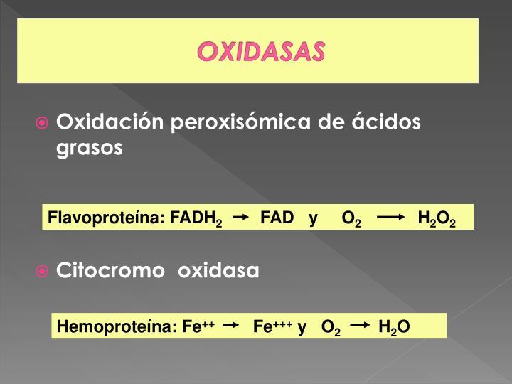 OXIDASAS