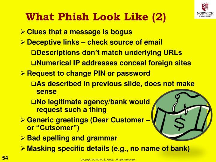 What Phish Look Like (2)