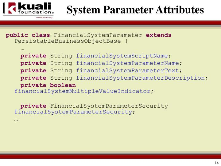 System Parameter Attributes