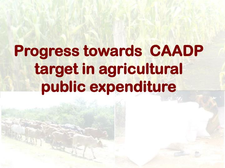Progress towards  CAADP target in agricultural public expenditure