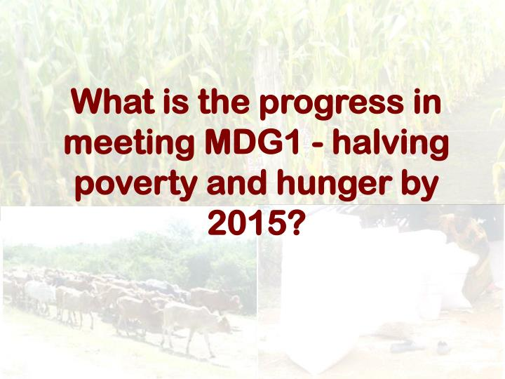 What is the progress in meeting MDG1 - halving poverty and hunger by 2015?