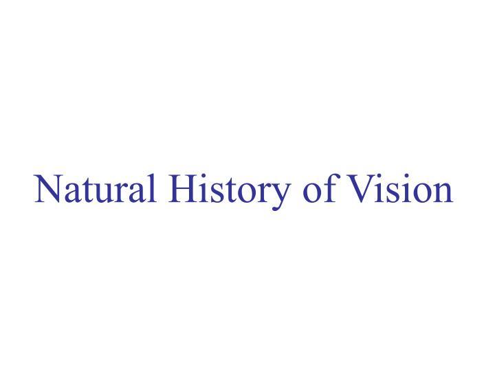 Natural History of Vision