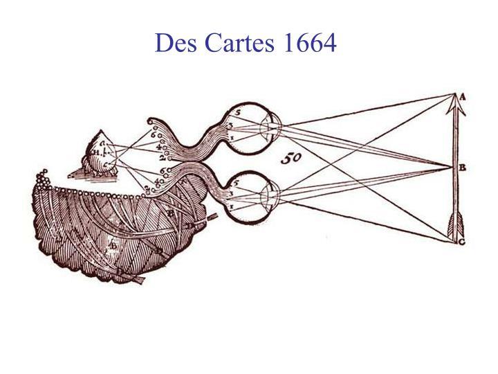 Des Cartes 1664