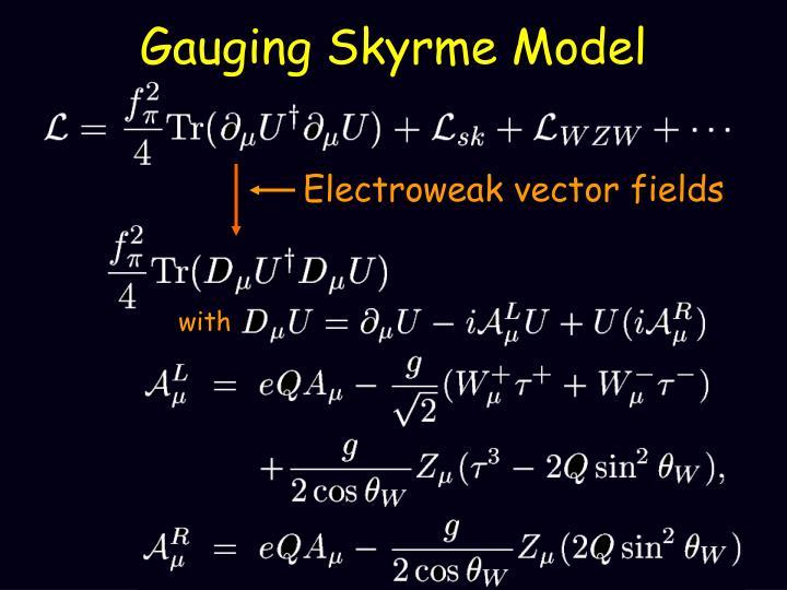 Gauging Skyrme Model