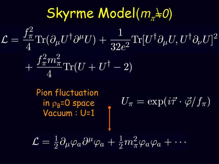 Skyrme Model