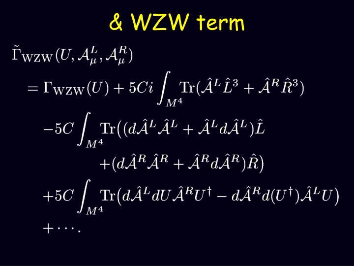 & WZW term
