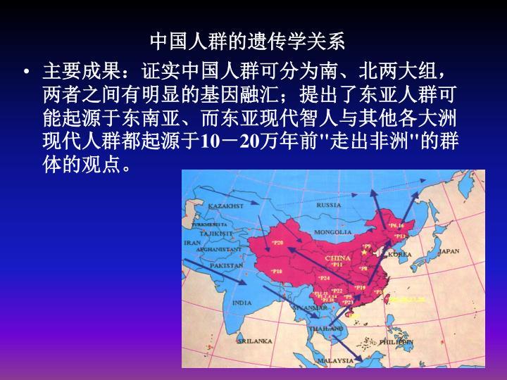 中国人群的遗传学关系