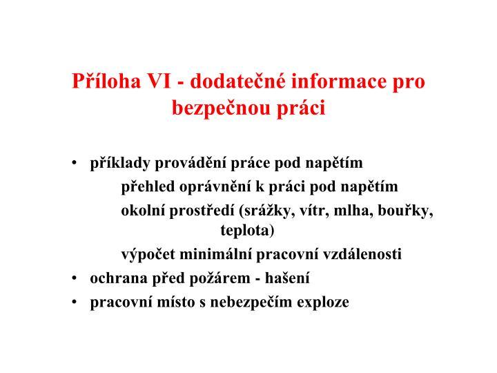 Příloha VI - dodatečné informace pro bezpečnou práci