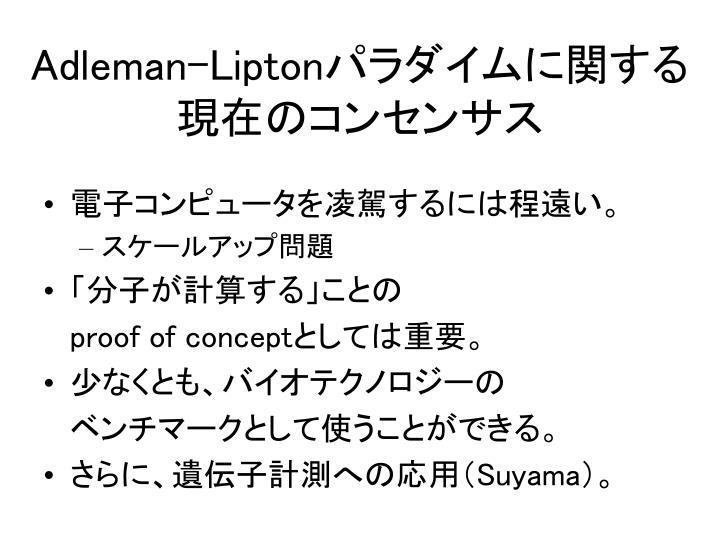 Adleman-Lipton