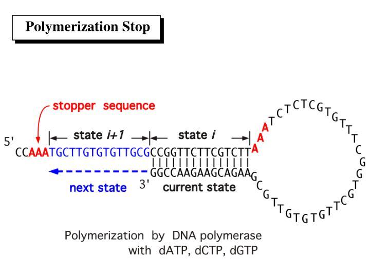 Polymerization Stop
