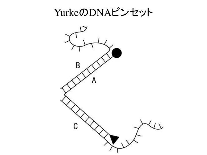 Yurke