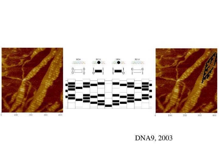 DNA9, 2003