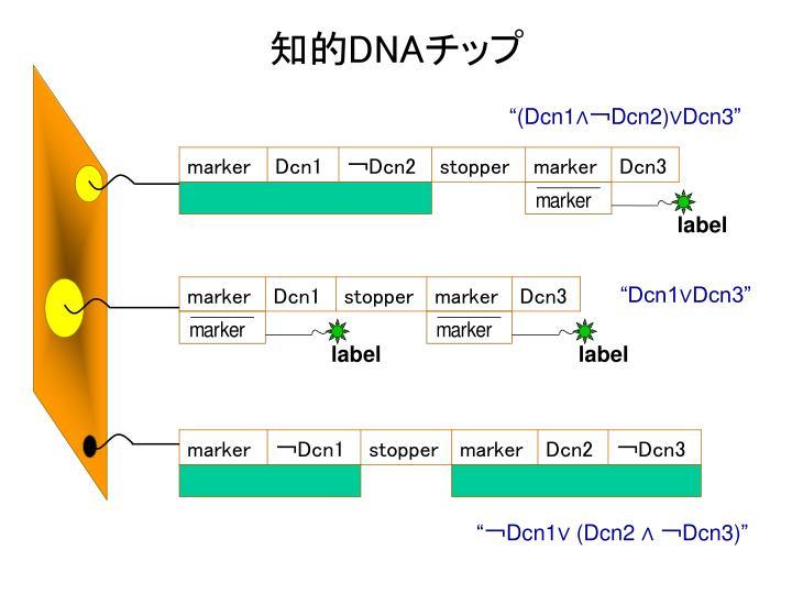 """""""(Dcn1∧"""