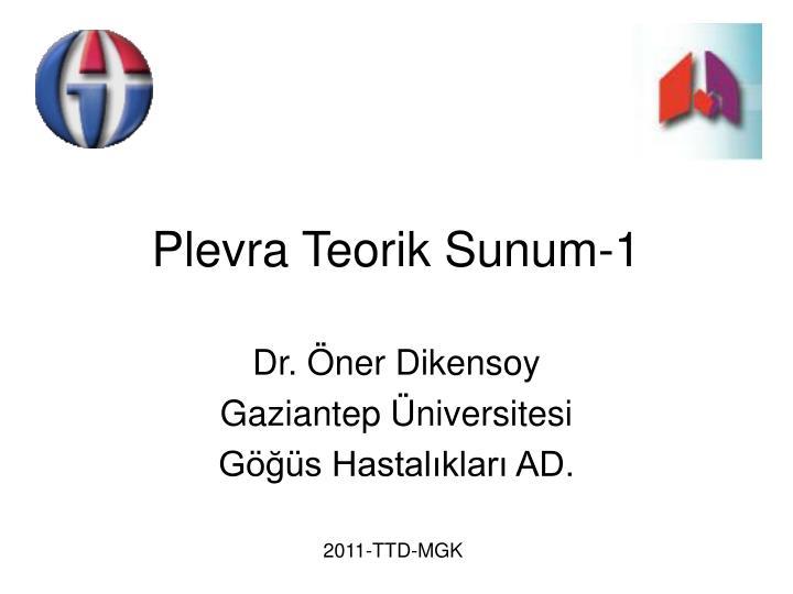 Plevra Teorik Sunum-1