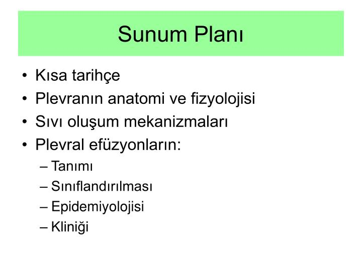 Sunum Planı