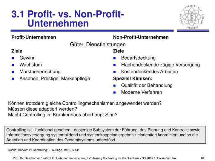 Profit-Unternehmen