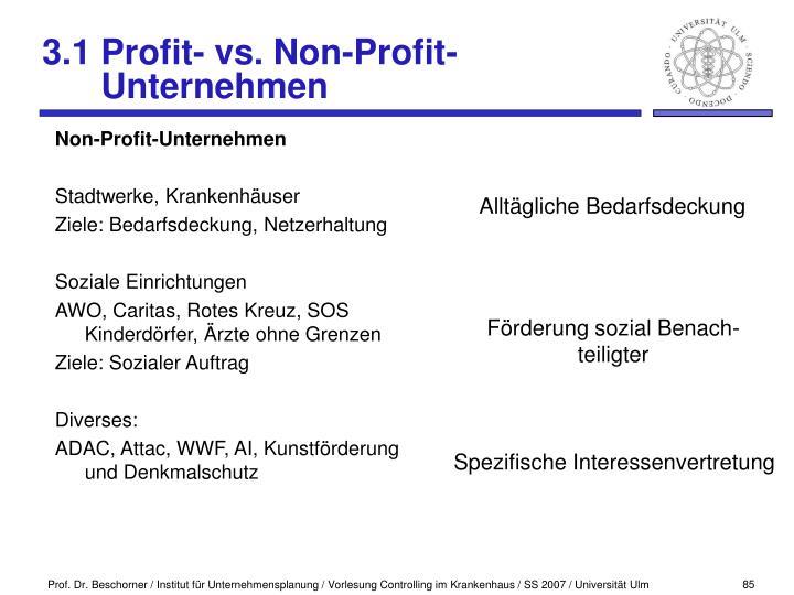 Non-Profit-Unternehmen
