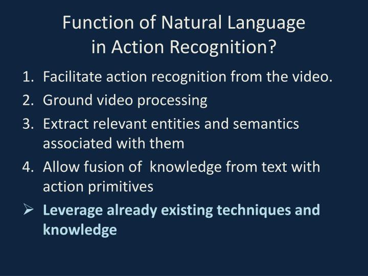 Function of natural language in action recognition