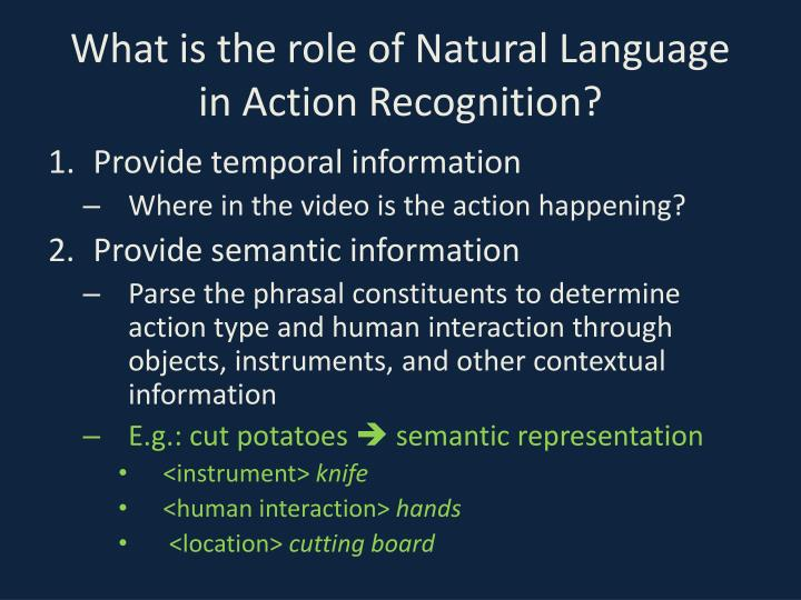 What is the role of Natural Language