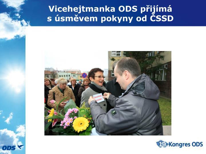 Vicehejtmanka ODS přijímá