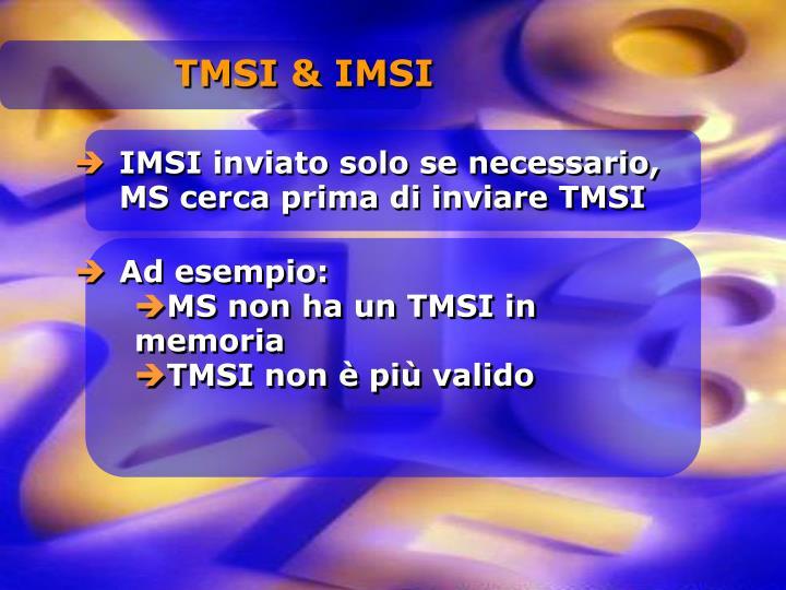 TMSI & IMSI