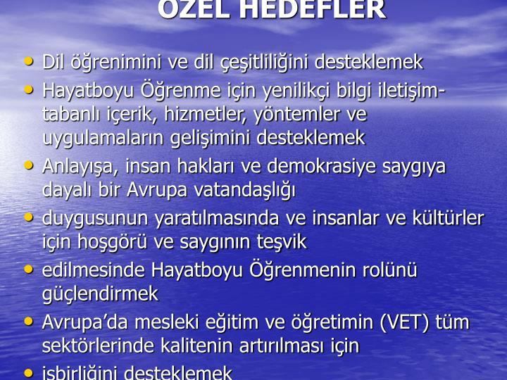 ÖZEL HEDEFLER