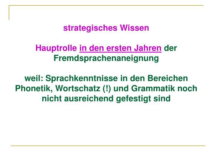 strategisches Wissen