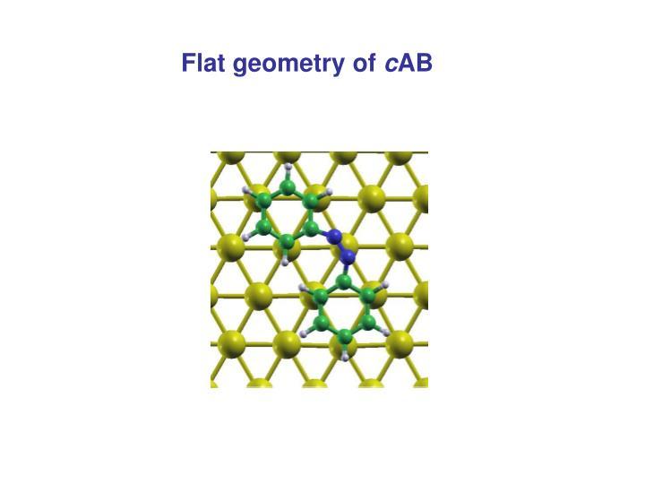 Flat geometry of