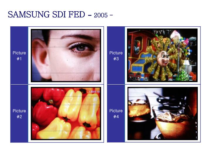 SAMSUNG SDI FED