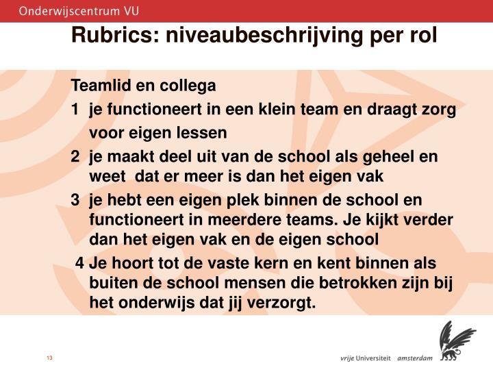 Rubrics: niveaubeschrijving per rol
