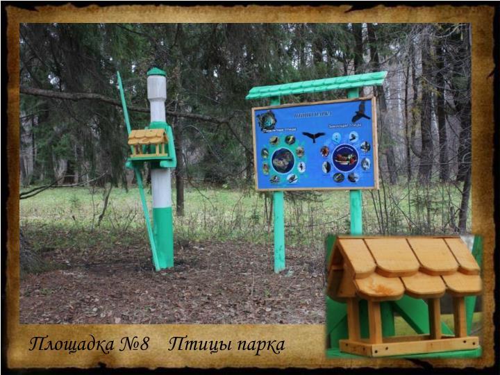 Площадка №8    Птицы парка