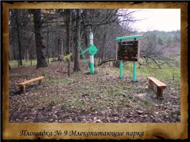 Площадка № 9 Млекопитающие парка