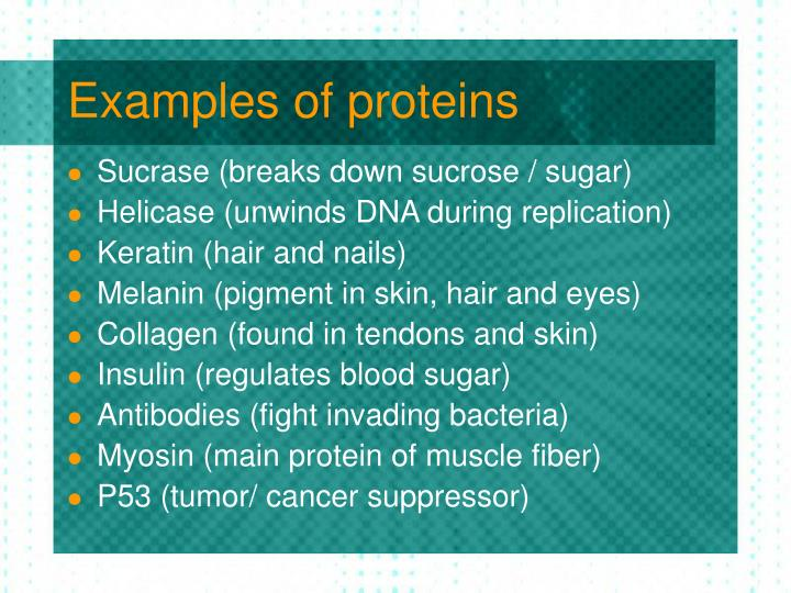 Examples of proteins