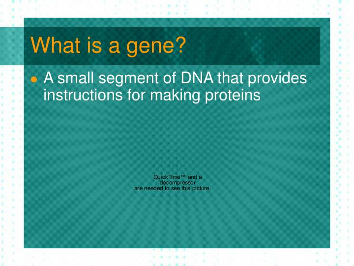 What is a gene