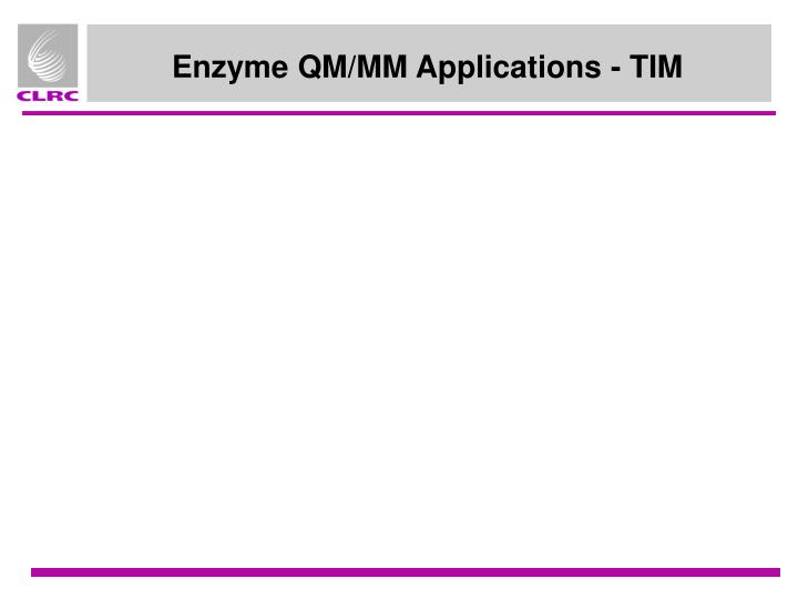 Enzyme QM/MM Applications - TIM