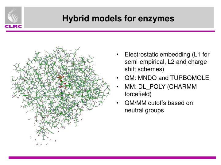 Hybrid models for enzymes