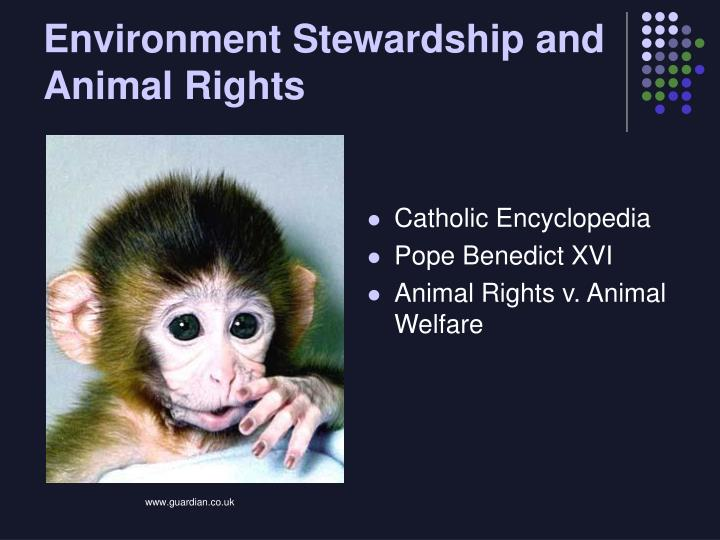 Environment Stewardship and Animal Rights