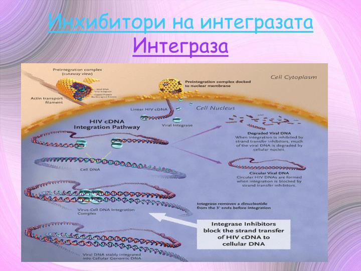 Инхибитори на интегразата