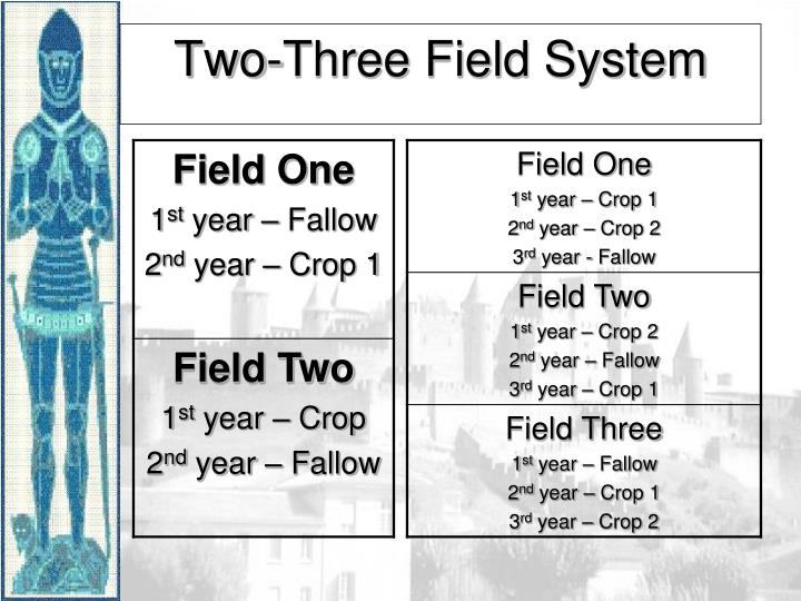 Two-Three Field System