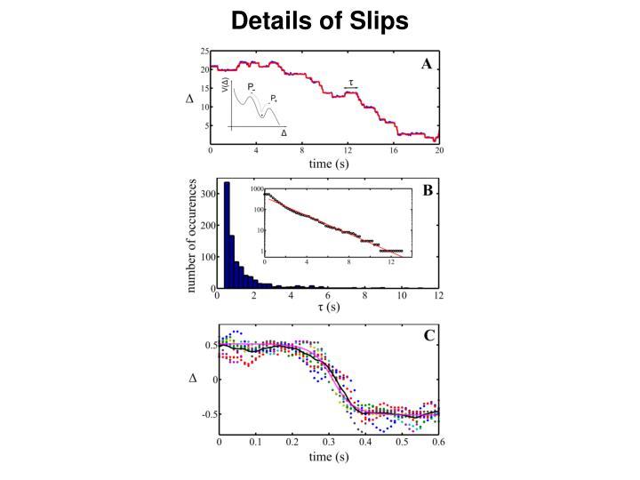 Details of Slips