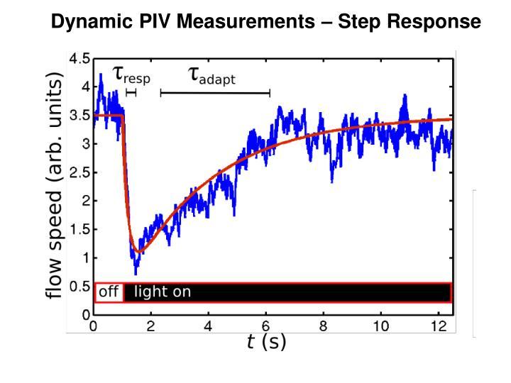 Dynamic PIV Measurements – Step Response