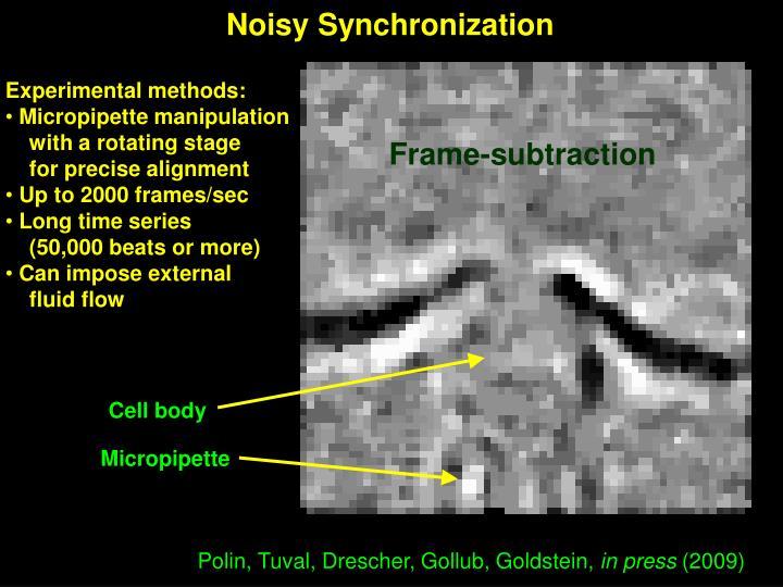 Noisy Synchronization