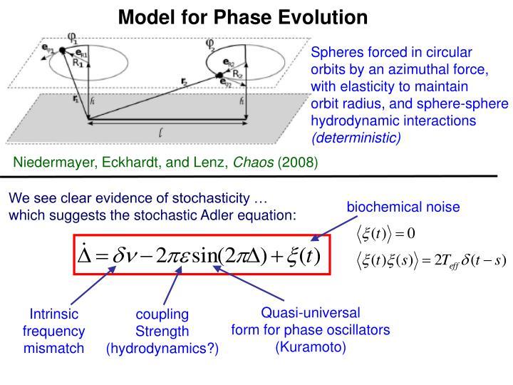 Model for Phase Evolution