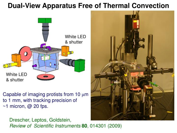 Dual-View Apparatus Free of Thermal Convection