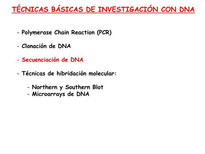 TÉCNICAS BÁSICAS DE INVESTIGACIÓN CON DNA