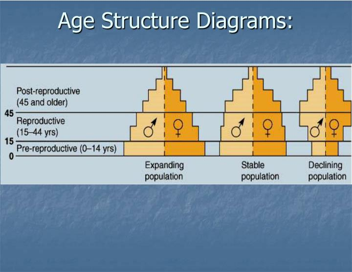 Age Structure Diagrams: