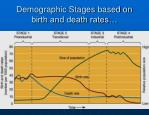 demographic stages based on birth and death rates
