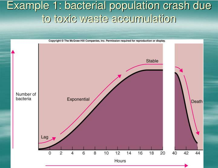 Example 1: bacterial population crash due to toxic waste accumulation